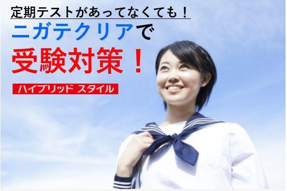 【中三・7月号】定期テストがあってなくても! ニガテクリアで受験対策!(ハイブリッドスタイル)
