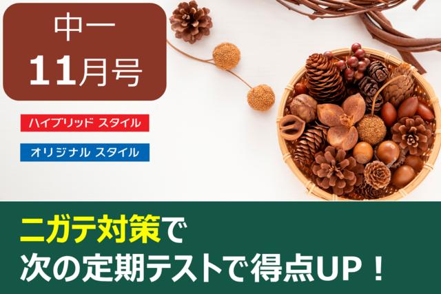 【中1・11月号】効率的なニガテ対策こそ得点UPのカギ!
